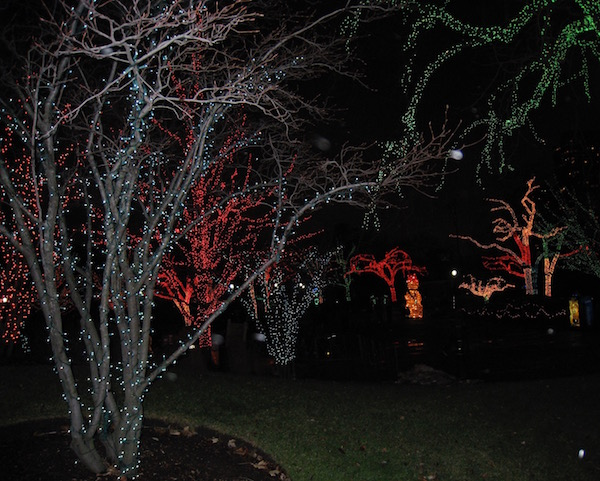 Zoo lights at Lincoln Park Zoo