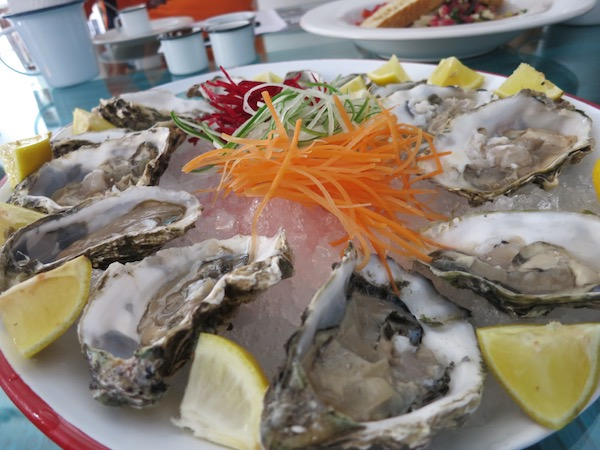 Oysters at Fresco in Mazatlan