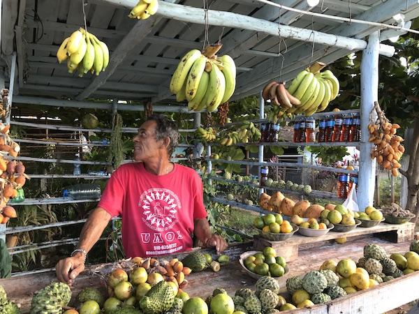 Fresh Fruits in Trinidad
