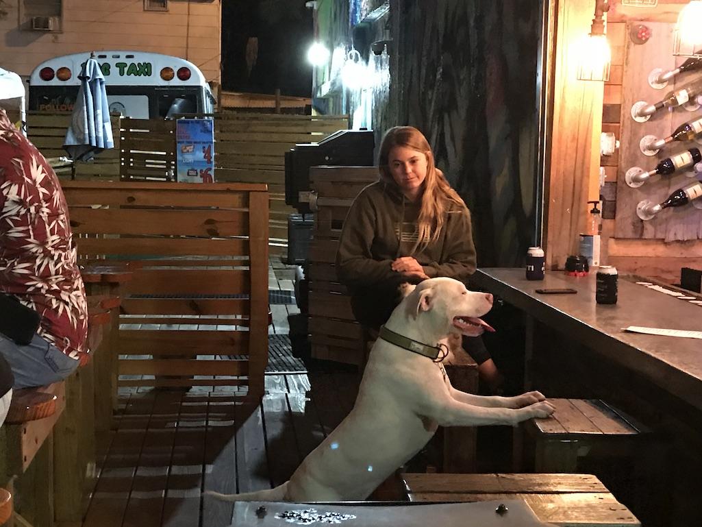 The Dog Bar Can I get a drink St. Petersburg FLorida