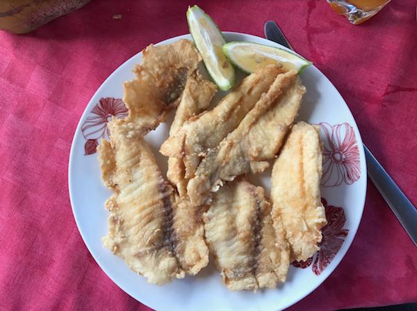 Trinidad Fish Photo