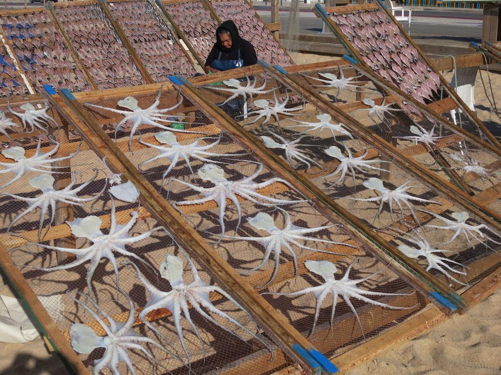 Nazare Fish Market Portugal