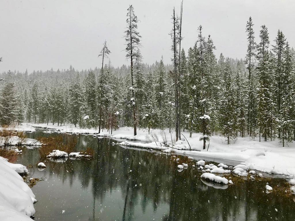 Snow is beautiful in Yellowstone